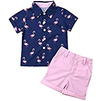 Seyurigaoka Toddler Kids Baby Boy Gentleman Suits Short Sleeve Flamingo Shirt Top + Pink Shorts 2Pcs Summer Outfits Set
