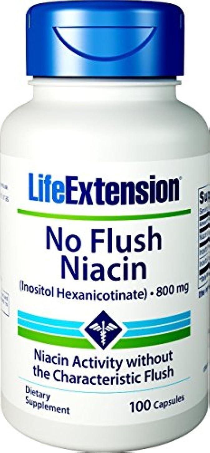眠いです直立取り除くノンフラッシュナイアシン 800mg含有/1粒 100粒 海外直送品