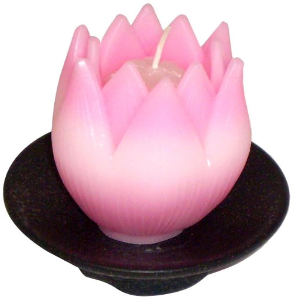 解明するラフレシアアルノルディうなる東海製蝋のろうそく リリィ 器付き ピンク