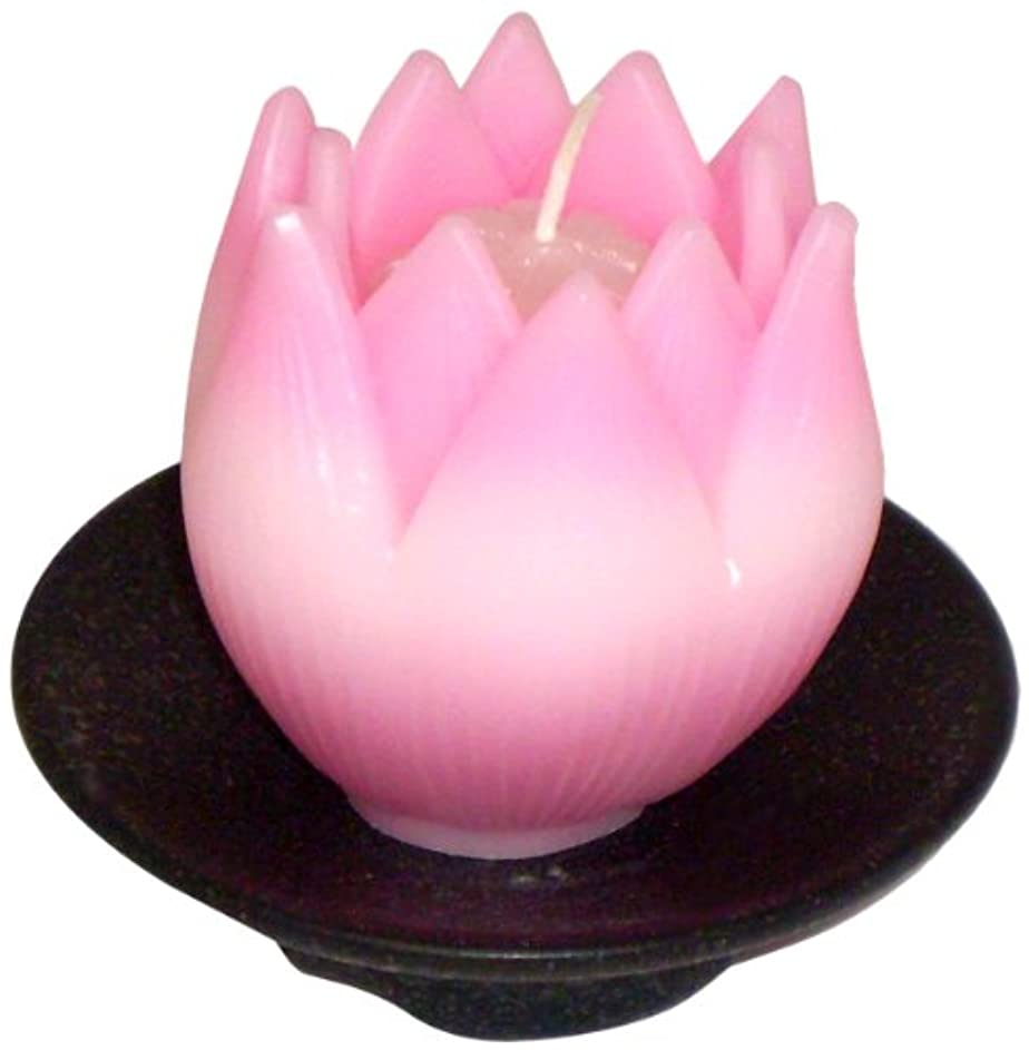 はぁ礼拝悪因子東海製蝋のろうそく リリィ 器付き ピンク