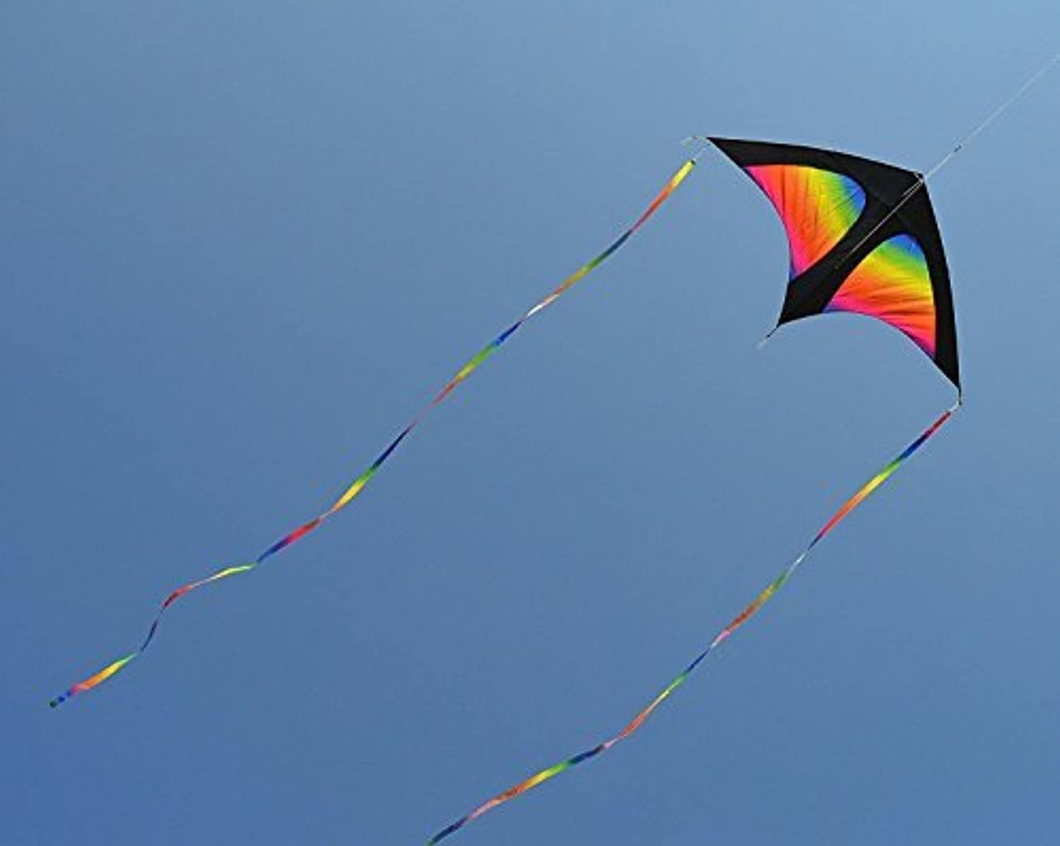 Delta Fish Swim In Sky Kite with Flying Line and Handle Large kite for kids and adults (Rainbow) [並行輸入品]