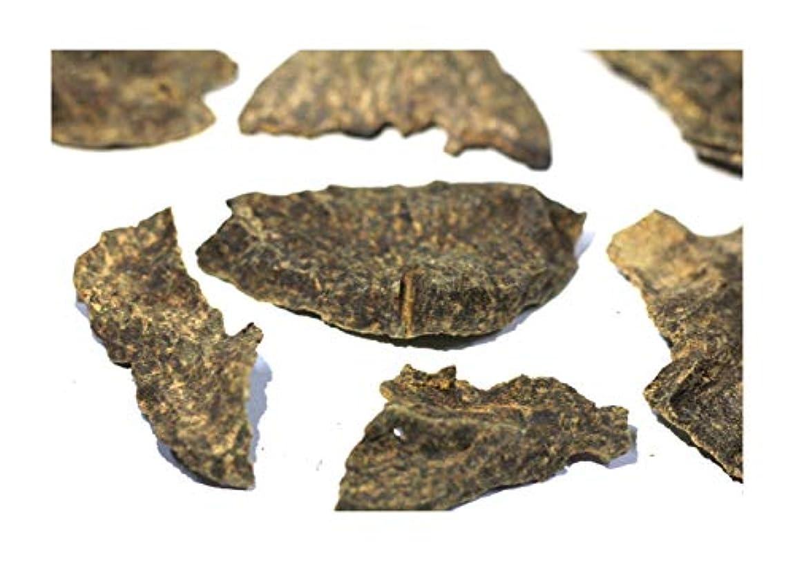 マリンクラッククリスチャンAgarwood Chips Oud Chips お香 アロマ | 天然の野生と希少な沈香チップ、Oudwood Vietnam製 | 純素材グレードA++ 100g