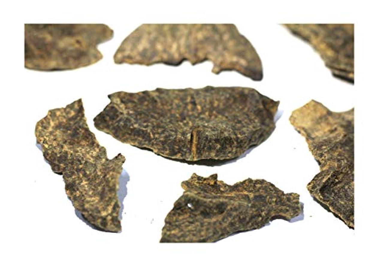 シャッターフェザー障害者Agarwood Chips Oud Chips お香 アロマ | 天然の野生と希少な沈香チップ、Oudwood Vietnam製 | 純素材グレードA++ 100g