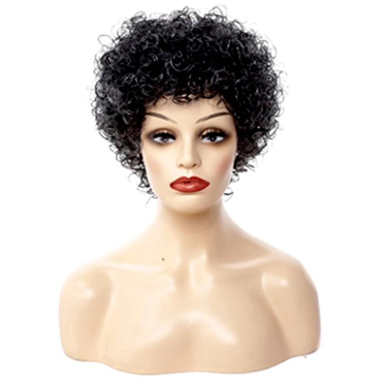 投票慣性ゆるいYOUQIU 30センチメートルナチュラル女性のかつら - 小カーリーヘア、短いバースト、色は黒と白のハーモニーウィッグのパーフェクトフィットでウィッグのための調節可能な快適な$ (色 : Black and white...