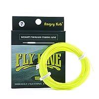 Angryfish 100ft wf5/ wf6/ wf7ライン重量フォワードフローティングFly Line with FloatingナイロンラインTapered引出線ループ WF5