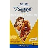 Sentinel Pet Meds Spectrum for Medium Dog 12-22Kg