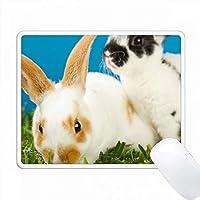 ヤングレックスウサギ。 PC Mouse Pad パソコン マウスパッド