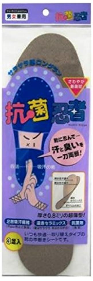 ハンバーガードアミラーピントーエー 抗菌忍者(3足入り)