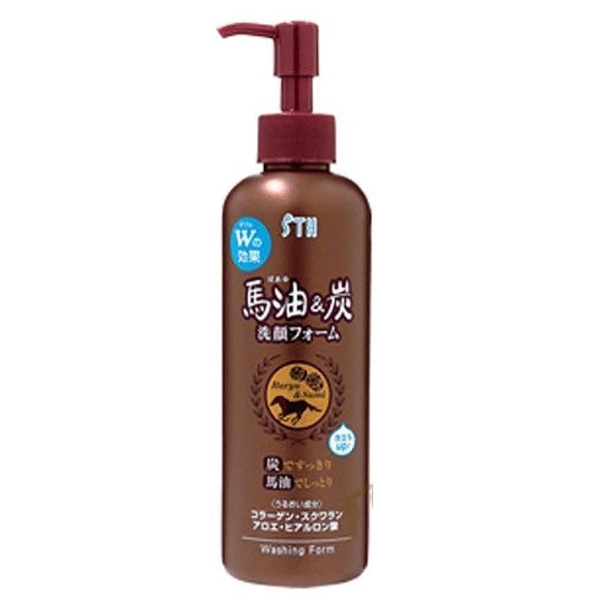 高揚したイサカ磁器馬油&炭 洗顔フォーム【2本組】