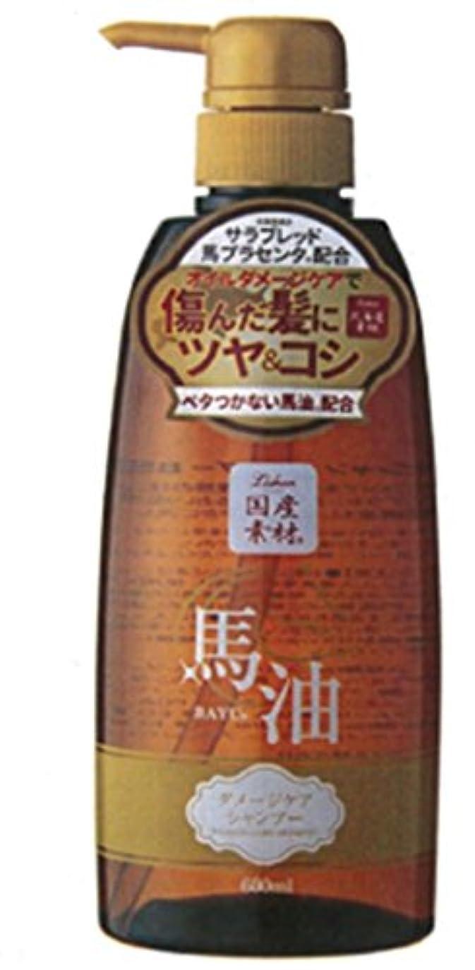 ナイトスポットチャートチョコレートアイスタイル リシャン馬油シャンプー 600ML
