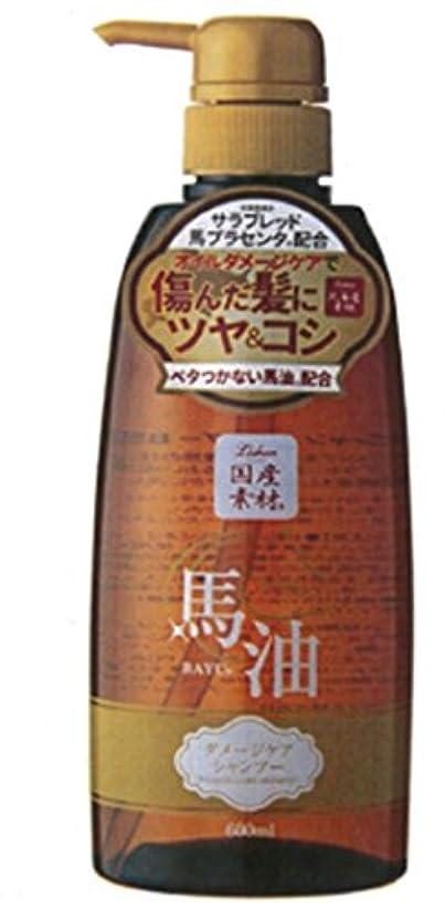 拡大する製品比較的アイスタイル リシャン馬油シャンプー 600ML