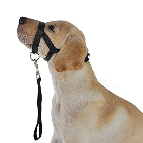 犬ホルターHaltiトレーニングヘッドヘッドカラージェントルリーダーハーネスブラック (XL)