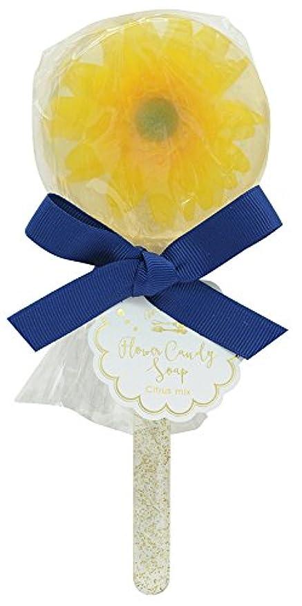 ノルコーポレーション 石鹸 フラワーキャンディ ソープ ガーベラ 75g シトラスミックス の香り OB-SMP-10-2