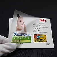 レーザープリンタ用 ぴたこんラベル 半透明 A4 100枚入 LNA4H-100