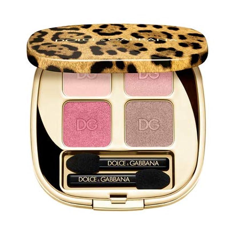 疾患聴く狂信者【Dolce & Gabbana(ドルチェ&ガッバーナ)】フェリンアイズ インテンスアイシャドウ クアッド (6)