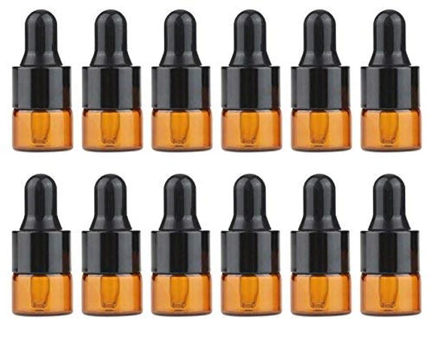 アマゾンジャングルおんどり視線echo-ove 1ml 1/4 Dram Glass Dropper Bottles Mini Tiny Empty Amber Glass Essential Oil Bottles with Glass Eye Dropper...