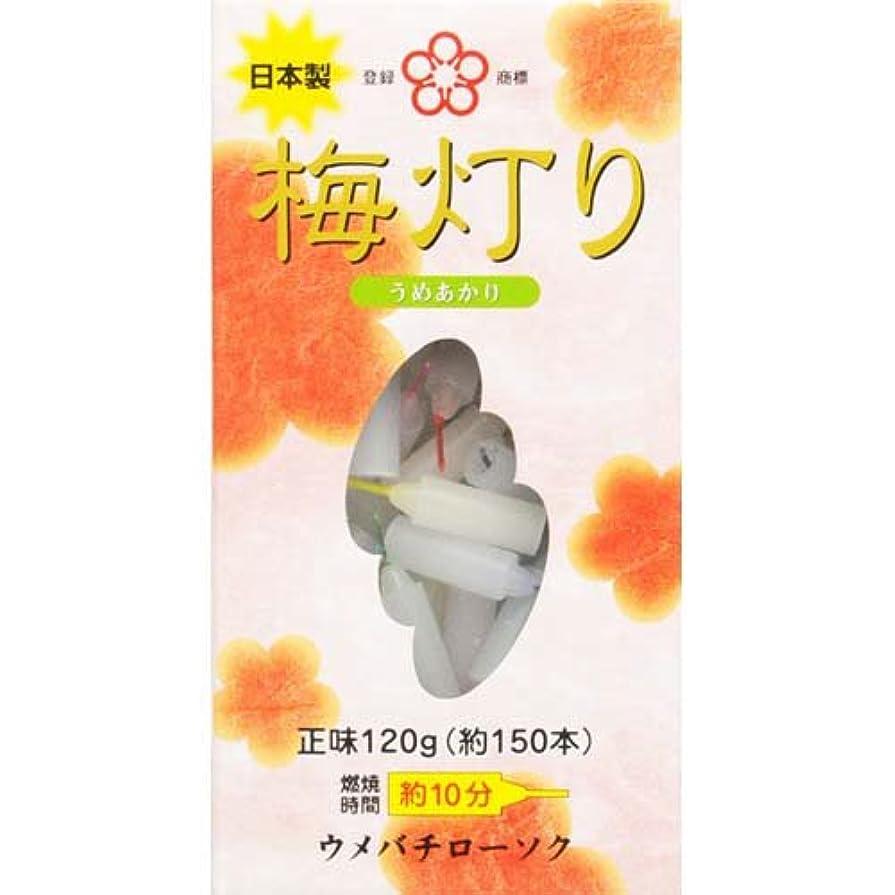 国民変色する指ウメバチ 梅灯り 120g 150本