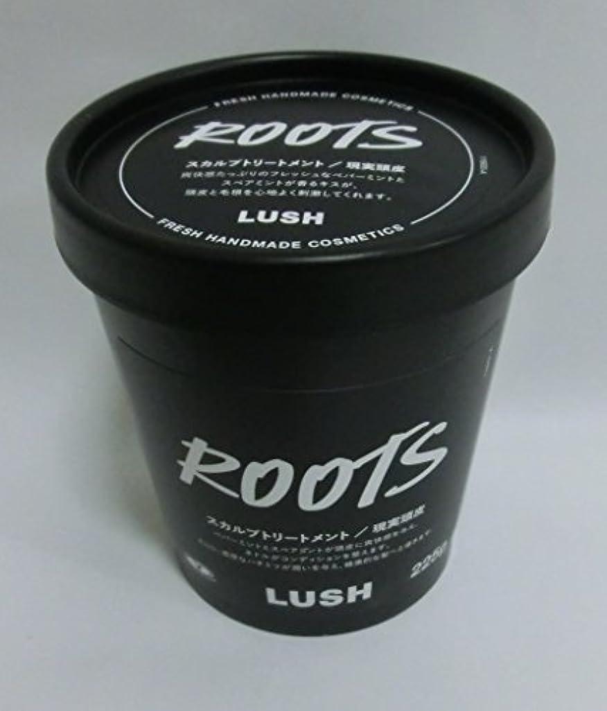 フラフープクラックポット休眠LUSH ラッシュ 現実頭皮(225g)
