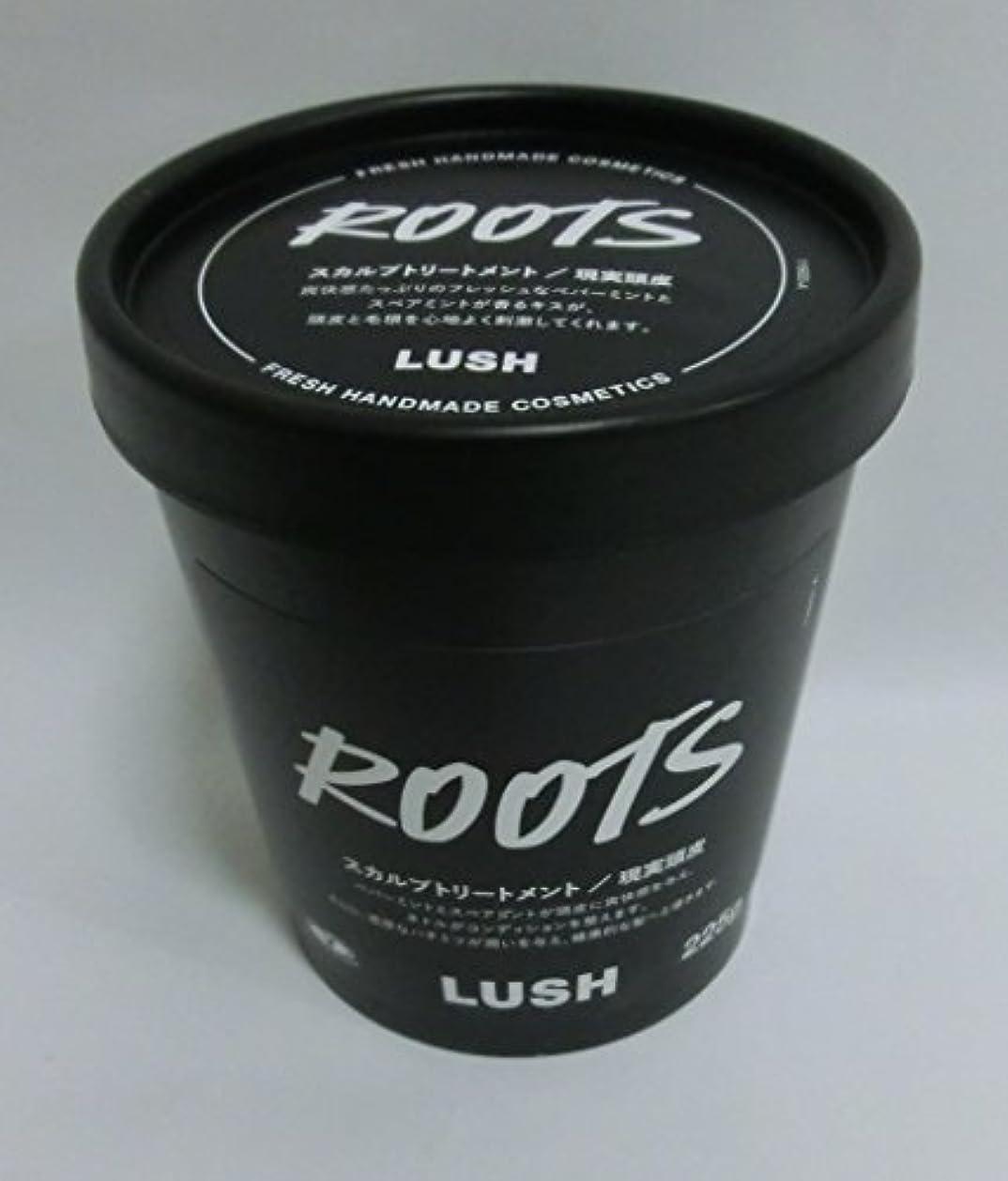ご飯人差し指回答LUSH ラッシュ 現実頭皮(225g)