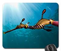 魚マウスパッド 181106-003 300*250*3 mm