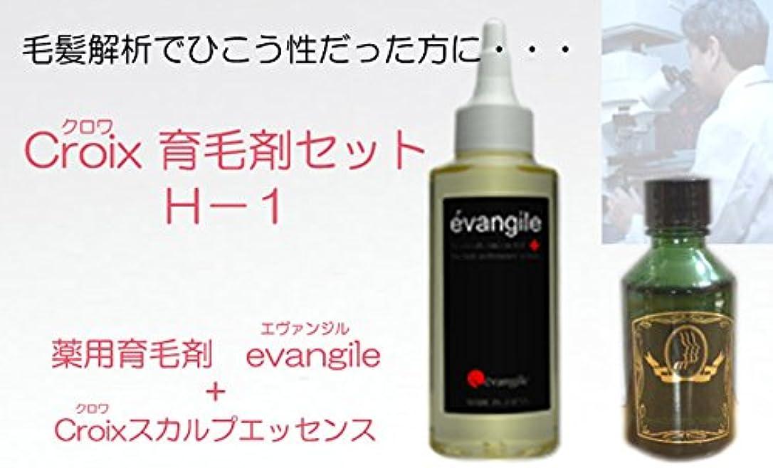 提供カートン鋭くCroixスカルプエッセンスH-1セット Croix育毛剤セットH-1(1ヶ月分)
