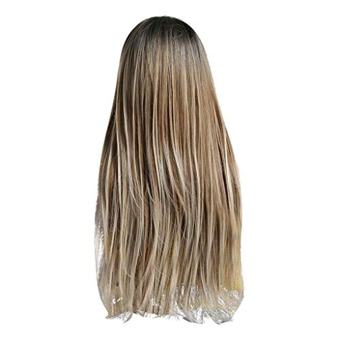 見捨てられた警戒パレードLazayyii かつら女性自然な3色 グラデーション化学繊維毛髪 (A)