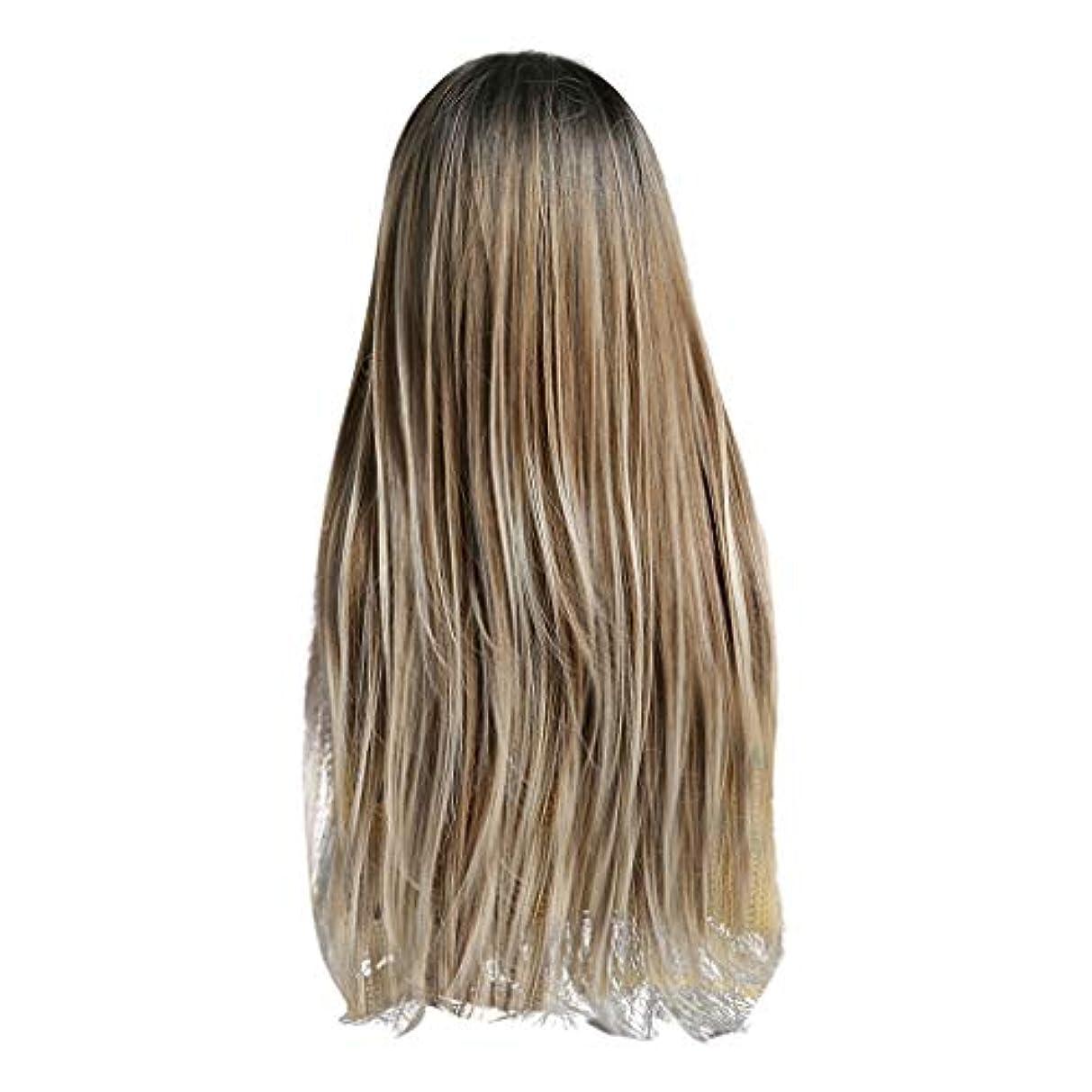 設置受け入れる土Lazayyii かつら女性自然な3色 グラデーション化学繊維毛髪 (A)