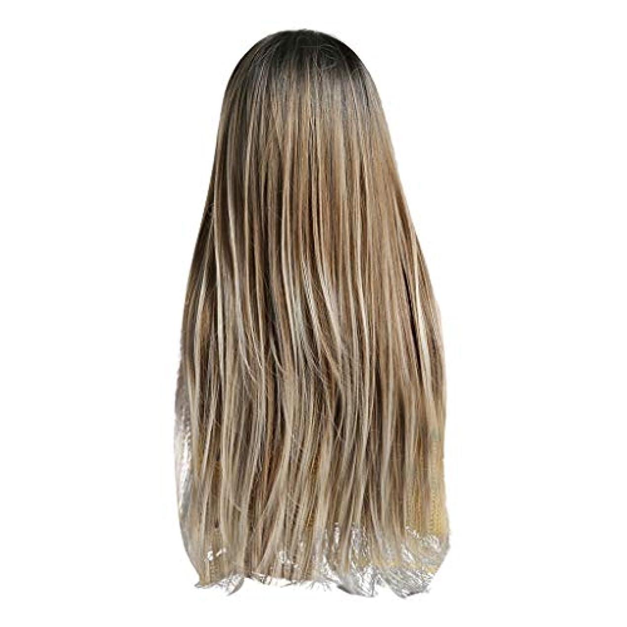 廃棄するタクシーの中でLazayyii かつら女性自然な3色 グラデーション化学繊維毛髪 (A)