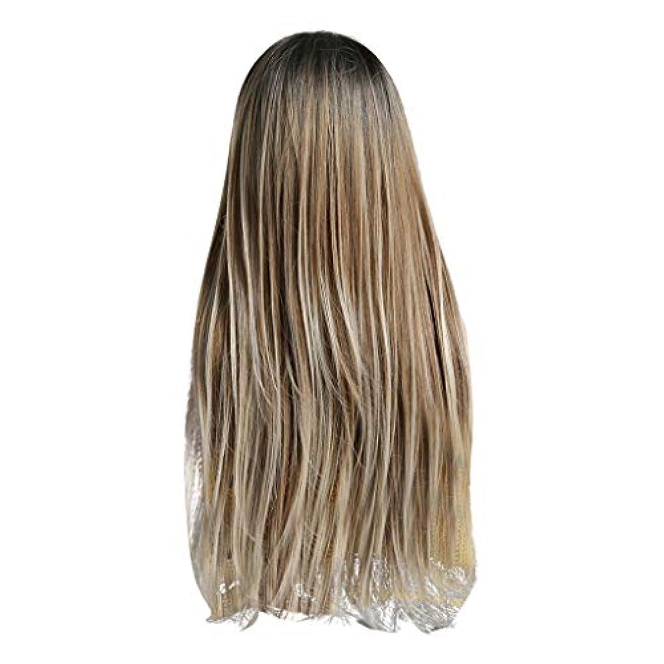 服を洗う表面的な工夫するLazayyii かつら女性自然な3色 グラデーション化学繊維毛髪 (A)