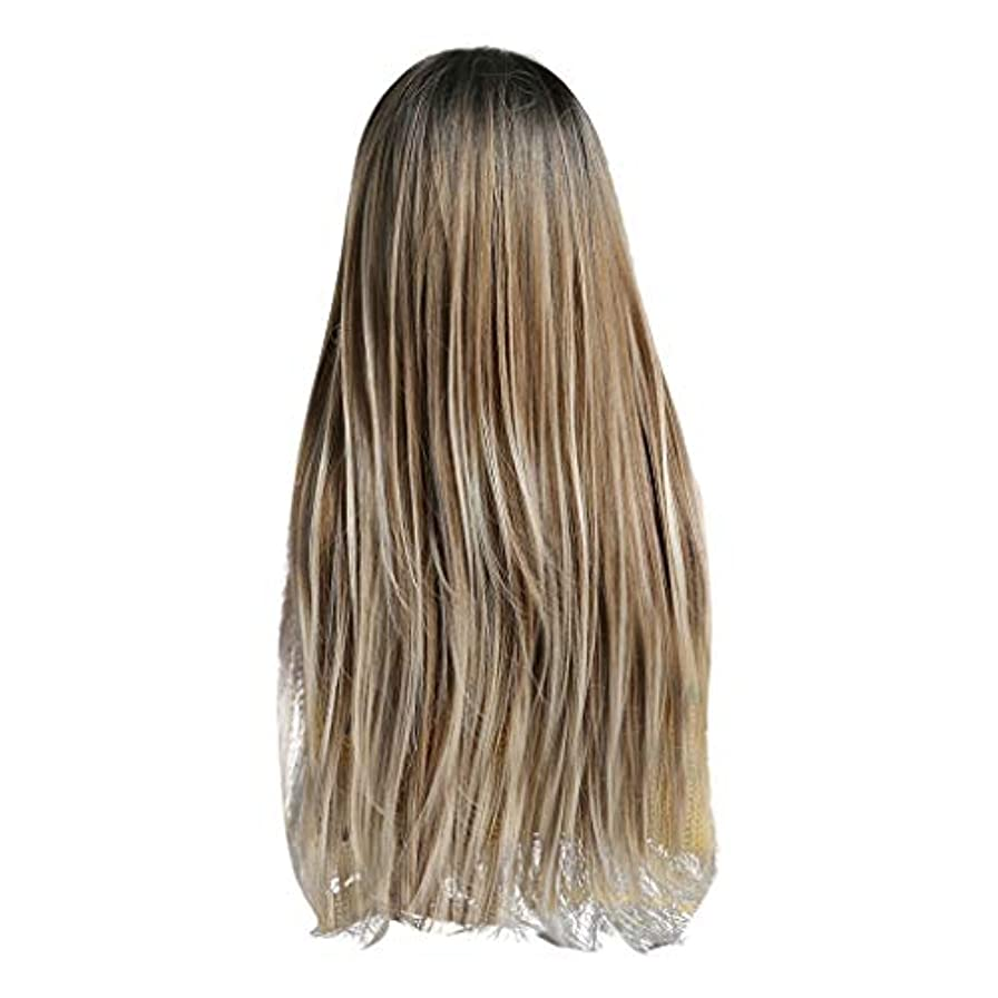 冗談で禁止する矩形Lazayyii かつら女性自然な3色 グラデーション化学繊維毛髪 (A)
