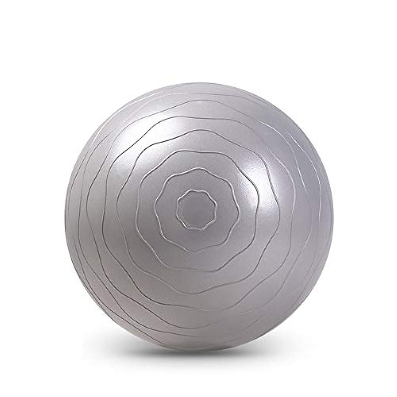 はさみアナロジー求人元気 エクササイズボール、55センチメートル65センチメートルヨガボールは、急速なポンプでピラティス出産療法、物理療法家のジムオフィスのボールチェア用ノンスリップバランスボールを肥厚しました ヨガのフィットネス、助産の回復 (Color : Gray 55cm)