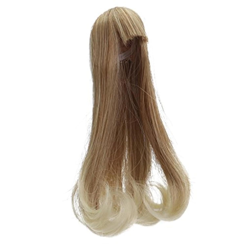 Blesiya ドール アクセサリー ストレートヘア かつら 15センチバービー人形ドールのため ドールウィッグ 5カラー選べる - #4