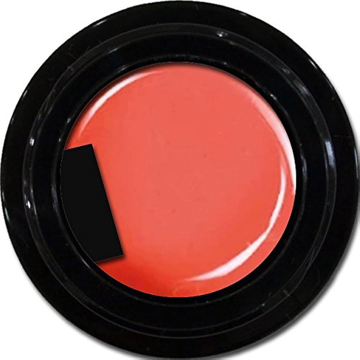 復活させる百エクステントカラージェル enchant color gel M301 FuzzyNavel 3g/ マットカラージェル M301 ファジーネーブル 3グラム