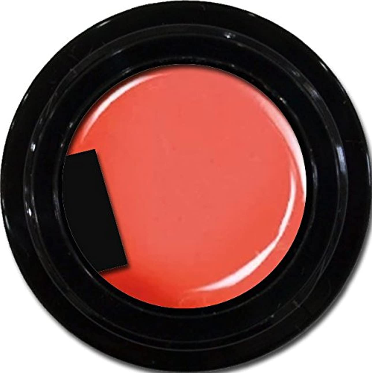 消費屋内熟達カラージェル enchant color gel M301 FuzzyNavel 3g/ マットカラージェル M301 ファジーネーブル 3グラム