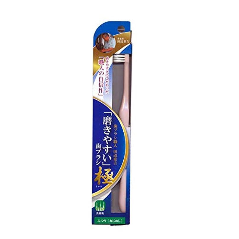 成長するインフレーション模索磨きやすい歯ブラシ極 (ふつう ねじねじ) LT-45 先細毛(色選択不可)