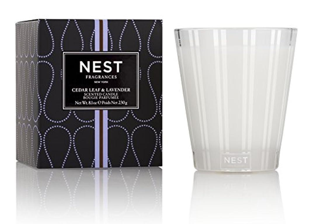バイナリワットアクセサリーネスト Scented Candle - Cedar Leaf & Lavender 230g/8.1oz並行輸入品