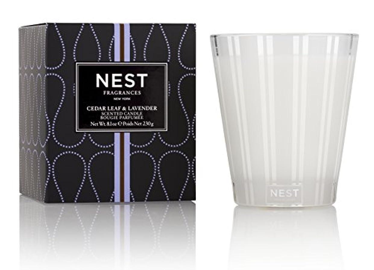 北方キリマンジャロゴミ箱ネスト Scented Candle - Cedar Leaf & Lavender 230g/8.1oz並行輸入品