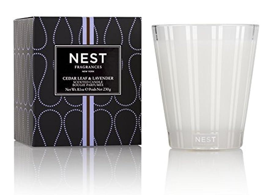 電化する同封する浴室ネスト Scented Candle - Cedar Leaf & Lavender 230g/8.1oz並行輸入品