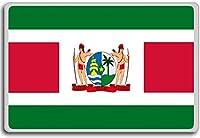 Standard Of The President Of Suriname - Head of state standard fridge magnet - 蜀キ阡オ蠎ォ逕ィ繝槭げ繝阪ャ繝