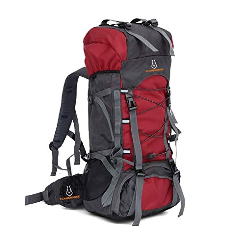 十年平らにする揃えるDeeploveUU 60L大容量アウトドアスポーツ登山バックパック内部フレームハイキングキャンプトレッキング防水ショルダーバッグ