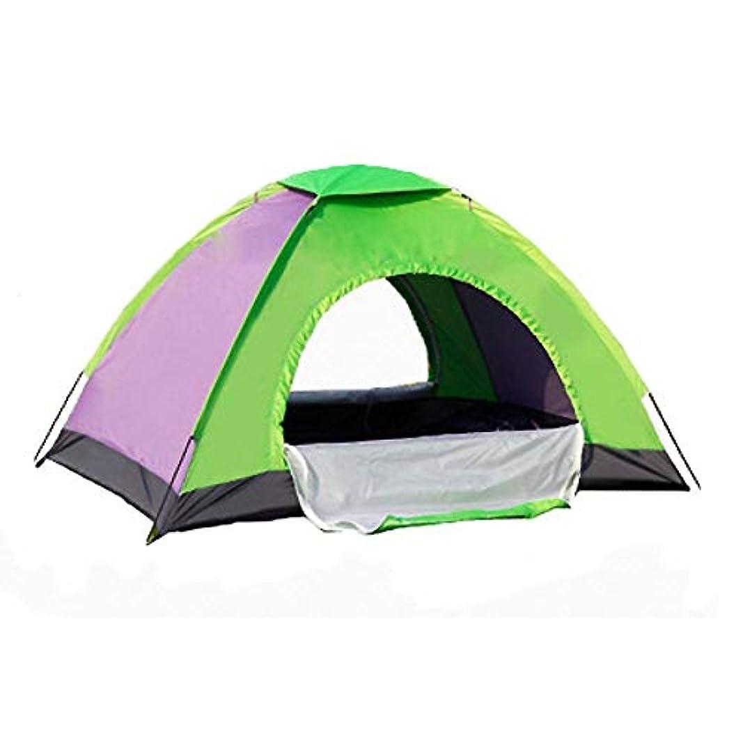 ディベートエステート雄弁キャンプテント、2人用テント軽量テント用キャンプドア用ポータブルキャリーバッグ付きポータブルセットアップ簡単グラスファイバーアウトドアスポーツ (色 : B)