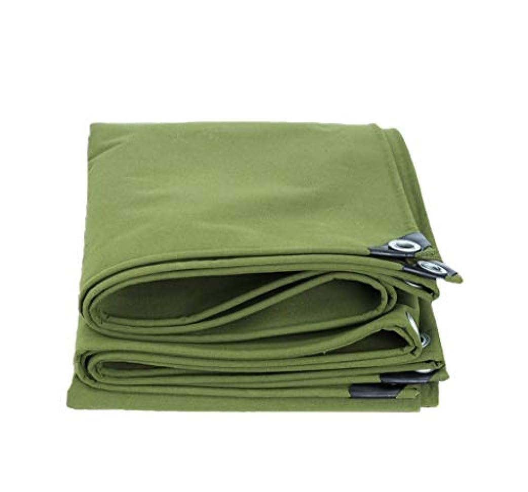 証明研究顕現遮光ネット アウトドアホームピクニックカー用キャンプ用防水ポンチョグリーン/織物ターポリン 迷彩ネット屋外隠しテント (サイズ さいず : 3*4m)