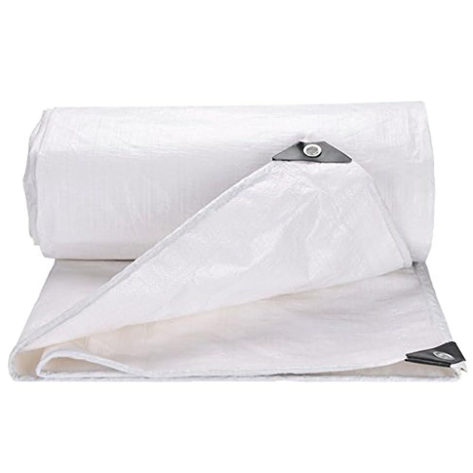 審判経験者日付WJ タープ- ターポリン - 防塵防水ターポリン?トラックシェッド?クロス?テント?アンダーレイ?キャンピング?アウトドア用、マルチサイズ?オプション(ホワイト) /-/ (Color : White, Size : 5MX10M)