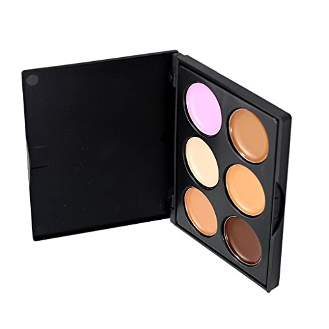 モール気性裁判所Kesoto コンシーラー 6色パレット 化粧用 コンター フェイス 全3種選択可能     - #2