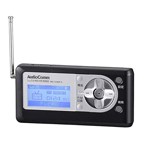 DSP ワンセグTV/AM/FM 小型ポケットラジオ RAD-TV100M (ブラック)