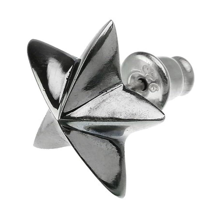 カイウスアノイグレードBinich(ビニッチ) ビッグ ポインテッド スター ピアス シルバーアクセサリー 片耳用(1個売り)