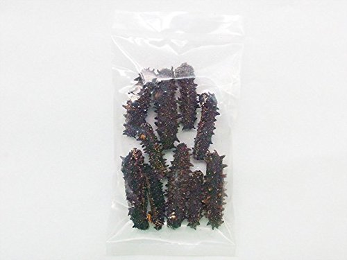 乾燥ナマコ B級品 50g (Bランク) 北海道産乾燥なまこ 金ん子 (中華高級食材) 干し海鼠 北海キンコ 海参