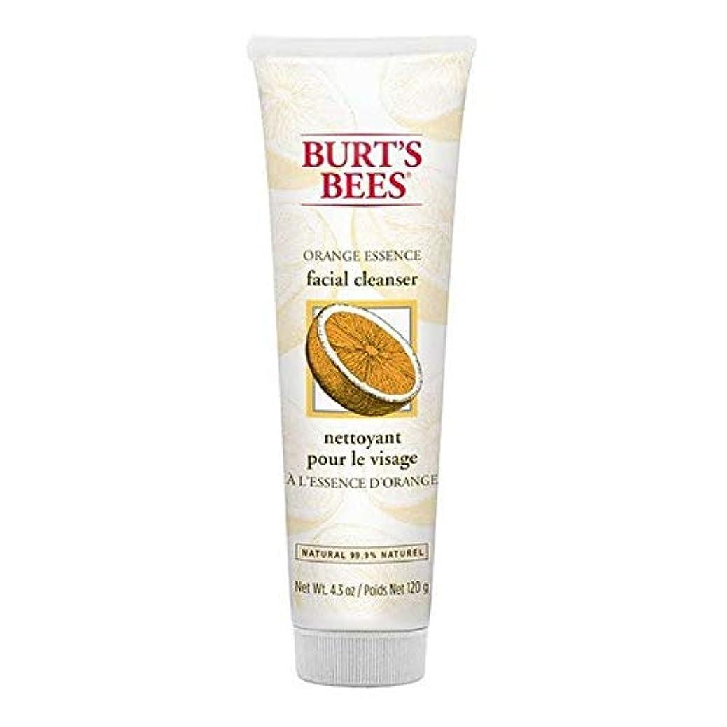 紫の漫画恐れ[Burt's Bees ] バーツビーオレンジエッセンス洗顔料の120グラム - Burt's Bees Orange Essence Facial Cleanser 120g [並行輸入品]