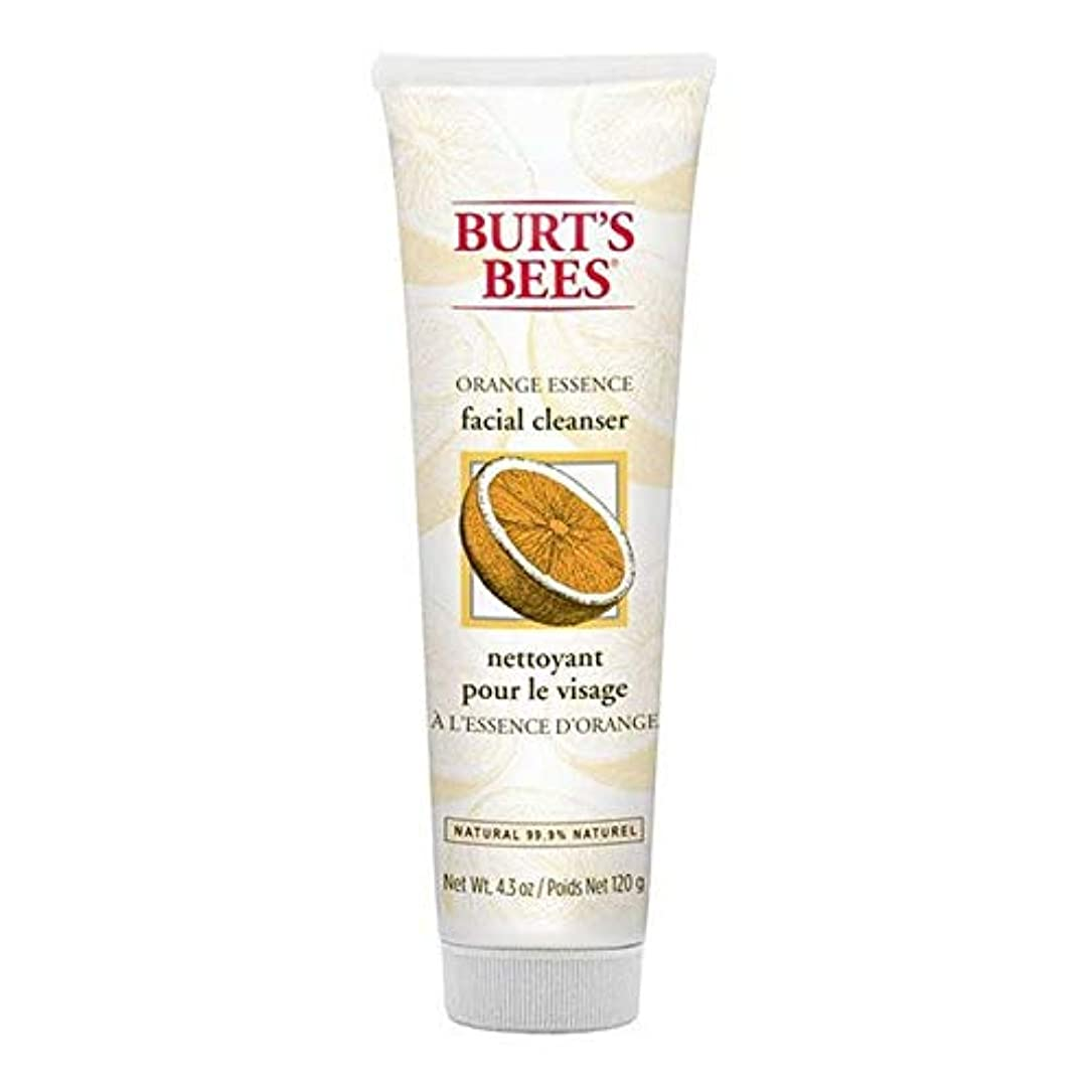 魅力的であることへのアピール突進モナリザ[Burt's Bees ] バーツビーオレンジエッセンス洗顔料の120グラム - Burt's Bees Orange Essence Facial Cleanser 120g [並行輸入品]