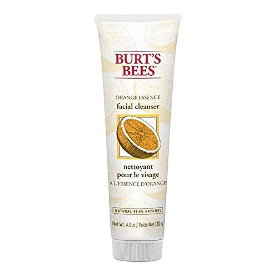速い居心地の良い付属品[Burt's Bees ] バーツビーオレンジエッセンス洗顔料の120グラム - Burt's Bees Orange Essence Facial Cleanser 120g [並行輸入品]